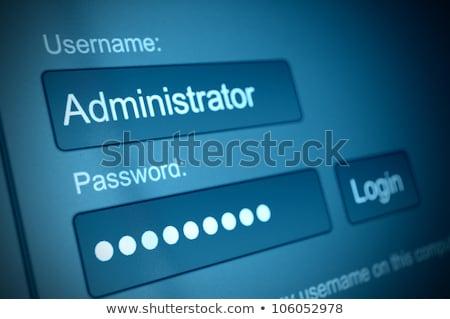 Password box in internet browser, online security Stock photo © stevanovicigor