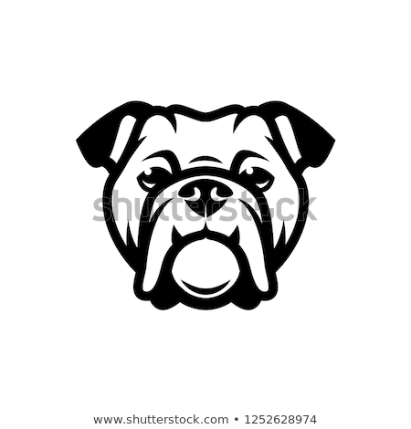buldogue · design · de · logotipo · 10 · arte · assinar · dentes - foto stock © sdCrea