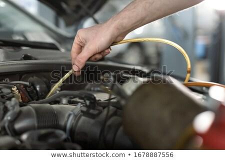 Problems with brake fluid. Stock photo © smoki