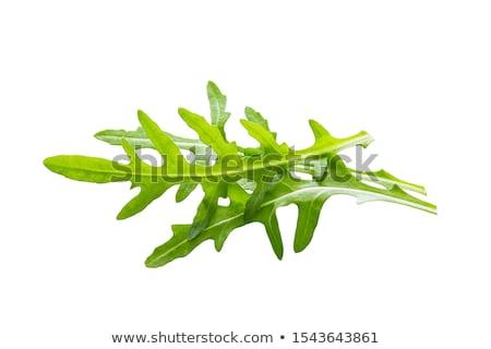 frischen · Blätter · alten · Holztisch · Natur · Blatt - stock foto © digifoodstock