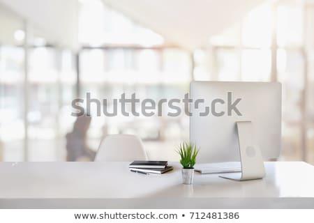 irodai · asztal · számítógép · készlet · felső · kilátás · űr - stock fotó © karandaev