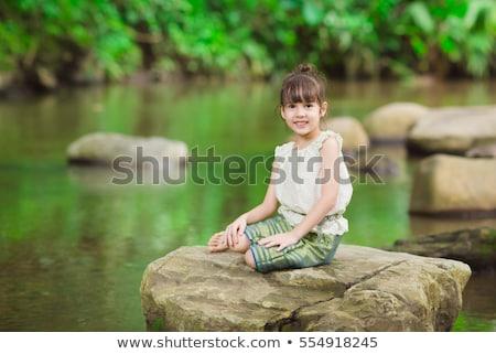 岩 · 森林 · 風景 · 葉 · 山 · 緑 - ストックフォト © wavebreak_media