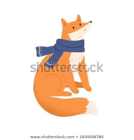 Cauda raposa isolado branco animal cara Foto stock © popaukropa