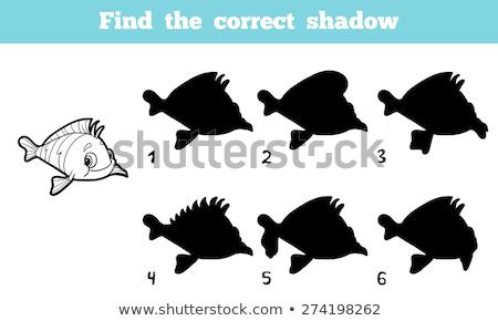 матча тень дети головоломки игры рыбы Сток-фото © adrian_n