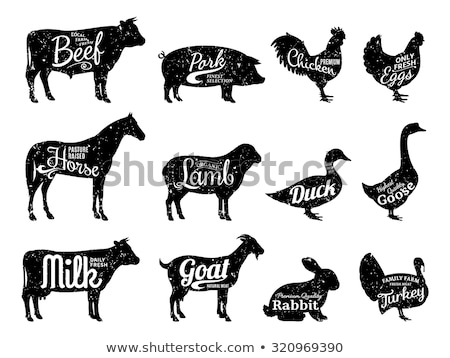 sticker design with farm animals stock photo © bluering
