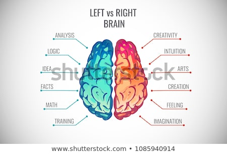 brain function symbol stock photo © lightsource