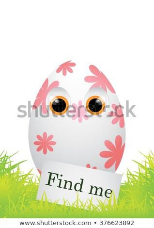 Find me! Easter egg. stock photo © Zela