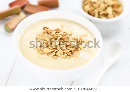 Rhubarb and Yogurt Smoothie Stock photo © ildi