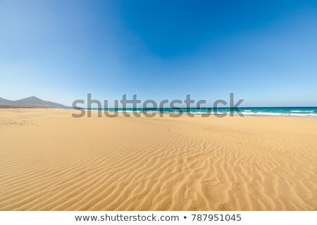 Cofete beach, Fuerteventura, Canary Islands, Spain Stock photo © kasto
