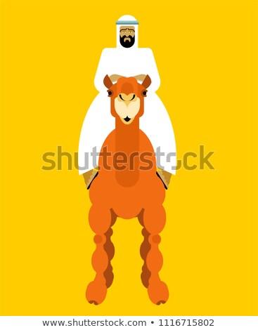 Arabski człowiek wielbłąda facet krajobraz tle Zdjęcia stock © popaukropa