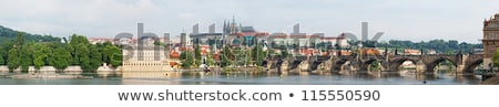 Winter in Prague - city panorama with St. Vitus Cathedral Stock photo © benkrut