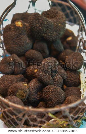 fresh french black truffles in a basket perigord stock photo © freeprod