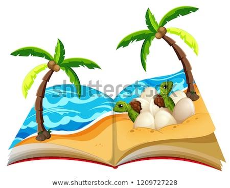 открытой книгой черепахи дерево ребенка школы дизайна Сток-фото © bluering