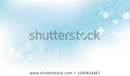 Corazón medicina azul pulsante ritmo gráfico Foto stock © alexaldo