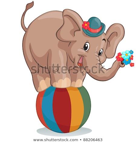 Słoń wektora cute Afryki zwierząt cyrku Zdjęcia stock © pikepicture