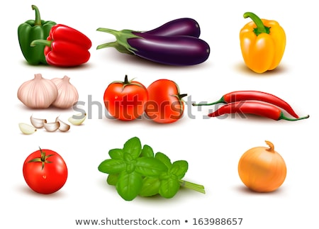 Pepper Raw Spicy Vegetable Vector Illustration Stock photo © robuart