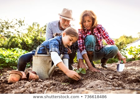 Stock photo: grandmother and girl planting flowers at garden