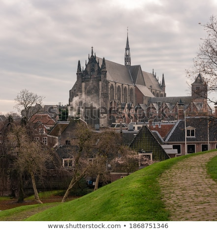 Igreja Holanda velho histórico telhados cidade Foto stock © neirfy