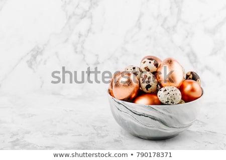 Ovos cinza bichano salgueiro Páscoa ovo Foto stock © furmanphoto