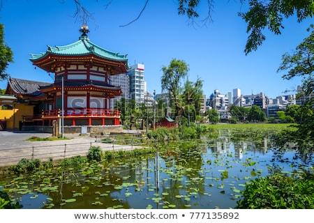 Gölet salon tapınak Tokyo Japonya bahar Stok fotoğraf © daboost