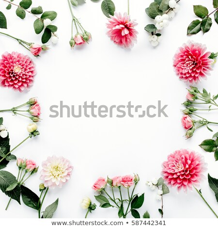 Picture Frame With Flowers Isolated Stock photo © cammep