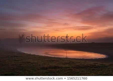 Rot Morgengrauen Licht Nebel ländlichen Landschaft Stock foto © lovleah