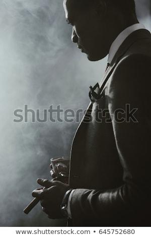 üzlet · kövér · macska · karakter · macskaféle · üzletember - stock fotó © photography33