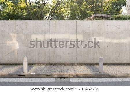lámpa · elhagyatott · ház · vízszintes · fotó · ajtó - stock fotó © taigi