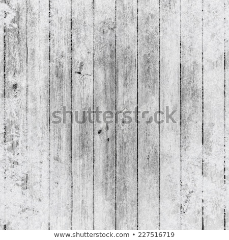 The texture of old boards with frost.  Copy space Stock photo © Valeriy