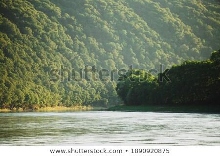 美しい 木材 峡谷 シーン 実例 雲 ストックフォト © bluering