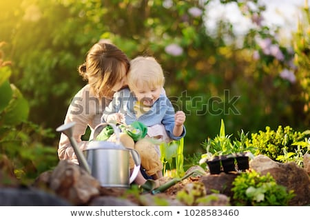 Beautiful young woman and her cute son planting seedlings in bed in the domestic garden at summer da stock photo © galitskaya