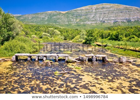 Cetina river near source old stone bridge view stock photo © xbrchx