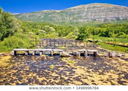 Rzeki źródło starych kamień most widoku Zdjęcia stock © xbrchx