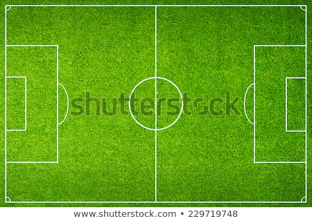 White stripe on the green soccer field from top view  Stock photo © inxti