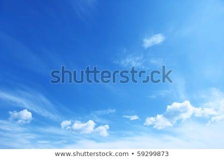 Blue sky with perfec cumulus clouds Stock photo © lunamarina