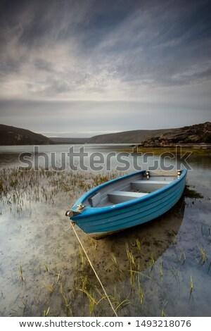 oude · boot · wrak · wal · oceaan · Schotland - stockfoto © smuki