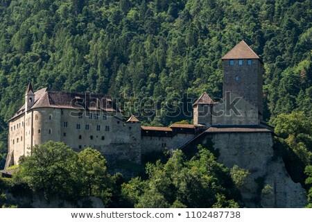 montanhas · panorâmico · ver · Áustria · céu · paisagem - foto stock © w20er