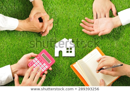 Businessman Presenting Ecological House Stock photo © AndreyPopov