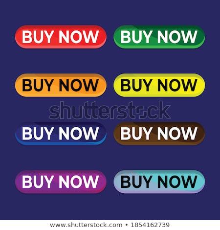 Kopen vector Rood web icon knop Stockfoto © rizwanali3d