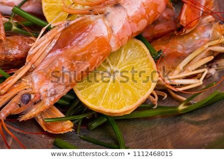 Mancs részlet fehér textúra állat homár Stock fotó © vtupinamba