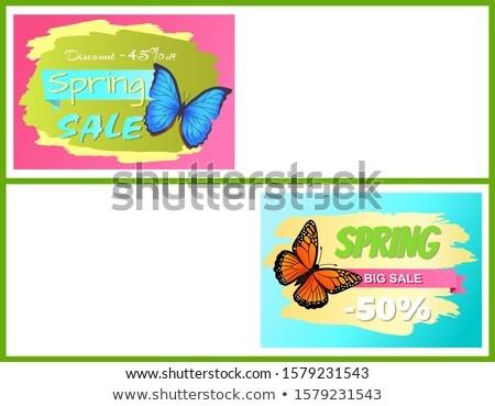 весны · продажи · силуэта · девушки - Сток-фото © robuart