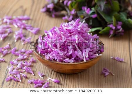 fraîches · pourpre · fleurs · bol · table · fleur - photo stock © madeleine_steinbach