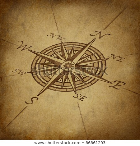 Compass rose in perspective with grunge texture Stock photo © Lightsource