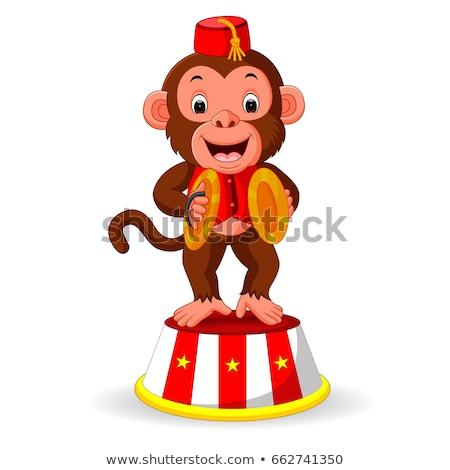 Circus Monkey Stock photo © derocz