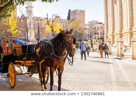 Carriage ride Stock photo © adrenalina