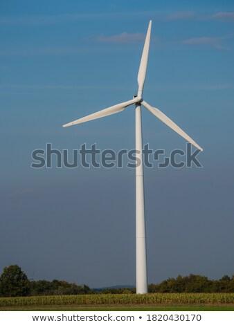 風力タービン 後ろ 緑 トウモロコシ フィールド 風景 ストックフォト © elxeneize