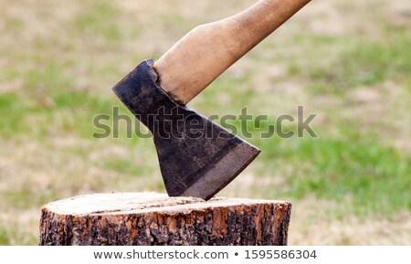 axe in log stock photo © bsani