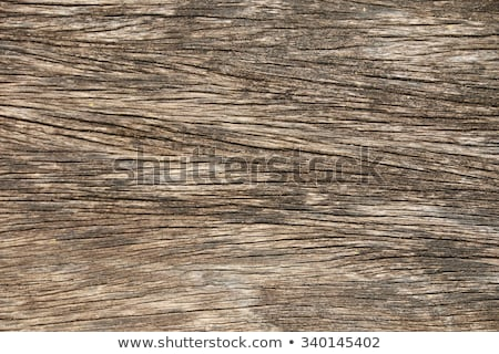 Rough timber Stock photo © Stocksnapper