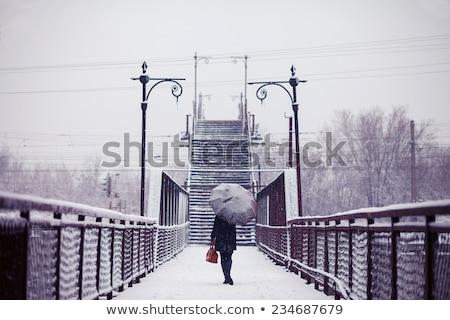 Nő esernyő hóesés mosoly boldog divat Stock fotó © vetdoctor