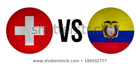 Zwitserland vs Ecuador groep fase wedstrijd Stockfoto © smocker03
